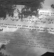 Pomnik upamietniający cmentarz żydowski w Pile