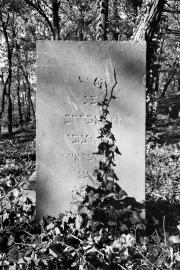Stan zachowania cmentarzy żydowskich