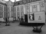 Wystawa na Dziedzińcu Urzędu Miasta w Poznaniu